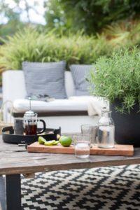 garden-design-twickenham (15)
